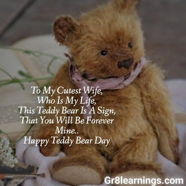 teddy day images-3