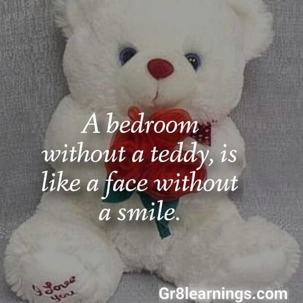 teddy day images-11