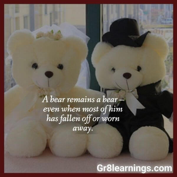 teddy day images-16